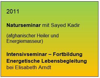 Sayed2011